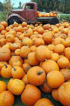 Nice Truck & Fall Pumpkins - British Columbia, Canada: