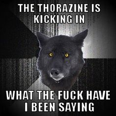 I liked Insanity Wolf better without the thorazine A Funny, Funny Jokes, Hilarious, Funny Stuff, Insanity Wolf Meme, Animal Memes, Funny Animals, When Life Gets Hard, Dark Humour Memes