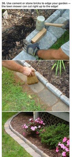 Use for border around plants & along fence to avoid weeding.