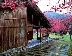 Geisha Japan, Explore, House Styles, Photography, Photograph, Fotografie, Photoshoot, Fotografia, Exploring