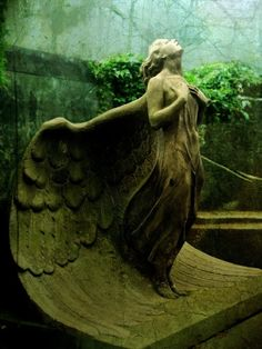 wing span on this angel inspires wonder...love... by maria.t.rogers