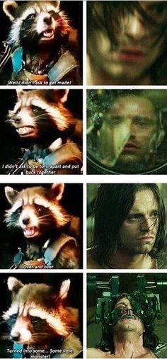 Guardians of the galaxy marvel avengers captain America rocket raccoon Bucky Barnes the winter soldier Dc Memes, Marvel Memes, Marvel Dc Comics, Marvel Avengers, Sebastian Stan, Geeks, Movies And Series, The Villain, Winter Soldier