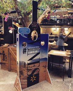 Aujourd'hui c'est le #vinocamp, mais c'est aussi le #Languedocday ! Partagez vos moments de dégustation |  #winelover #winelovers #languedocroussillon #wines #vinsdulanguedoc #languedocwines