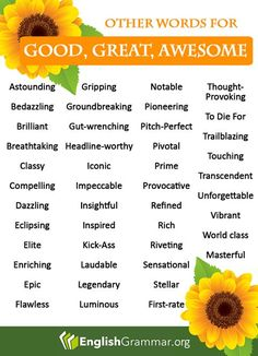 English Grammar - Replacements for good great and awesome! English Vocabulary Words, Learn English Words, English Grammar, Writing Words, Writing A Book, Writing Tips, Memoir Writing, Writing Courses, Creative Writing