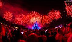 Walt Disney World Rokinon 8mm f/3.5 Fisheye Review