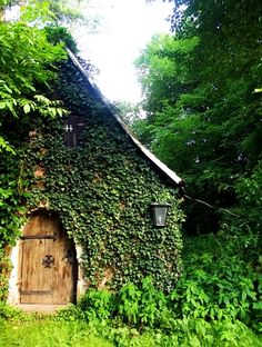 Woodsy cottage cloaked in green. Cabin In The Woods, Cottage In The Woods, Cozy Cottage, Cottage Homes, Garden Cottage, Storybook Homes, Storybook Cottage, Beautiful Homes, Beautiful Places