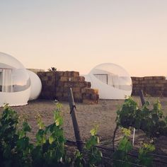 """Just when you thought glamping couldn't get any more Instagrammable, here come the bubbles. With stargazer-friendly transparent roofs, these """"five-million-star hotels"""" are popping up everywhere—from the vineyards of Baja California to the Arctic Circle—offering luxur..."""
