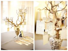 "To go with those centerpieces--manzanita branch guest ""book"""