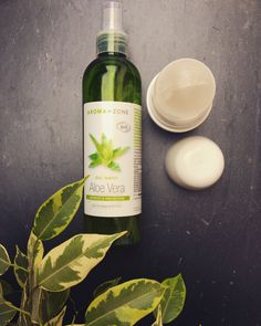 Two recipes for a healthy and homemade Deodorant: ball or cream! - Beauty and natural well-being. Deodorant Recipes, Homemade Deodorant, Organic Makeup, Organic Beauty, Natural Beauty Tips, Diy Beauty, Personal Beauty Routine, Top Skin Care Products, Magical Makeup
