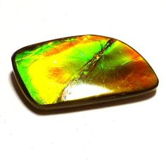 Ammolite Cabochon Stabilized Freeform Vibrant Red #fossil #opal #christmasgift