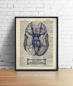 Sie haben einen schönen Geist Gehirn Kunstdruck ist meine ursprüngliche Design mit einer antiken Gravur, die Anzeige der faszinierenden Unterseite des Gehirns, eingefärbte blau. Perfektes Geschenk für Absolventen, med Studenten, Psychologen, Ärzte, etc.. Eine hohe Qualität Giclee von