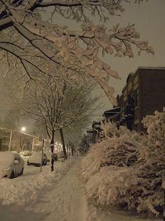 Snow in Montreal Winter Szenen, Winter Magic, Snowy Pictures, Montreal Ville, Winter's Tale, Snow Scenes, Winter Photos, Winter Beauty, Winter Solstice