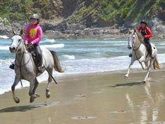 rutas a caballo de dos horas -  Playa de San Pedro CUDILLERO 15€