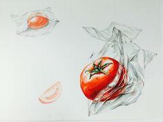 토마토(자연물) & 비닐