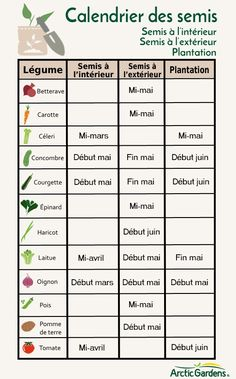 Calendrier des semis au Québec #Jardinage