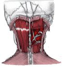HeadacheTherapy.org