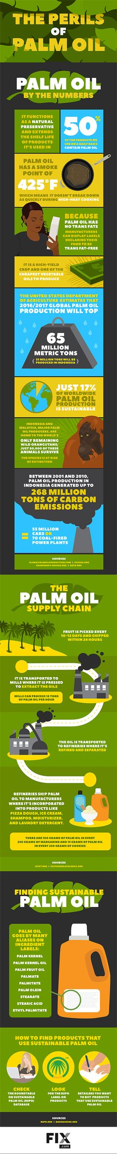 Palm Oil's Negative Effect on the Environment | Fix.com