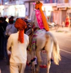 India - Groom arrived on horse for wedding at our hotel in Jaipur