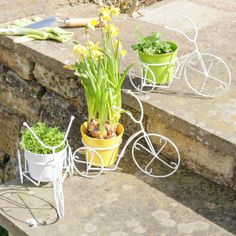 Effortlessly stylish tricycle planter made from iron in the shape of a three wheeled tricycle this item would be a perfect addition to a windowsill or garden area Finished in a white coating there is three options to choose from yellow, white or green plastic plant pot. Ideal decorative item that can be used in or outside of the home Lovely spring addition to the garden coupled together these make an eye catching feature Please select the colour of your choice from the drop down menu below.