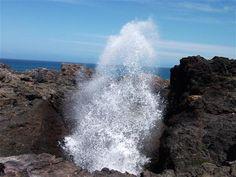 Kiama Blowhole - Photo by David Dezenieks #blow #hole #new #south #wales #coast #kiama #Australia