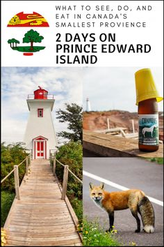 From red sand to red foxes this tiny Canadian province has much to see, and as I found out, visiting Prince Edward Island should not be rushed. East Coast Travel, East Coast Road Trip, Canadian Travel, Prince Edward Island, Nova Scotia, Travel With Kids, Pei Canada, Canada Trip, Canada Eh