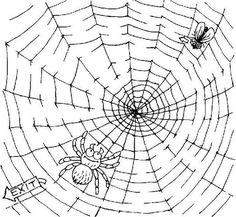 Fly Trapped On Spider Web Coloring Page : Color Luna Spider Coloring Page, Coloring Books, Coloring Pages, Fly Traps, Online Coloring, I Am Awesome, Drawings, Vintage Coloring Books, Quote Coloring Pages