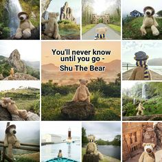 You'll never know until you go - Shu The Bear