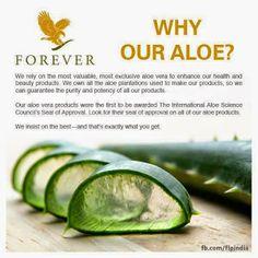 Aloe Vera Health Wellness - Google+