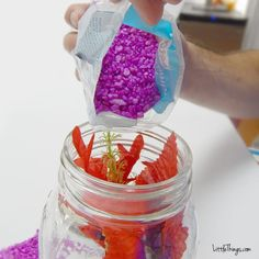 He Dumps Purple Rocks Into A Mason Jar. When I See What He Puts In Next? I Want One! Home Aquarium Fish, Fish Home, Mason Jar Photo, Mason Jar Diy, Saltwater Tank, Saltwater Aquarium, Reptile Cage, Reptile Enclosure, Types Of Fish