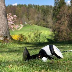 Sie wollen sich in der Natur bewegen, aber nicht einfach nur spazieren gehen oder joggen? Lassen Sie sich im KGC Dellach von der Faszination Golfsport begeistern. ⛳️ Foto: Jutta Kleinberger #Golfplatz #kgc #Dellach #Wörthersee #golf #sport #golfing #golfcourse #golflife #golfer #kgcdellach #golfclubs Golf Sport, Tap Shoes, Dance Shoes, Golfer, Nature, Simple, Dancing Shoes