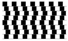 """Are These Lines Parallel?  Despite what your eyes are telling you, they are. It is thought that the """"café wall illusion"""" functions due to the high contrast in the two different """"bricks."""" When interpreting images, our brains tend to """"spread"""" dark zones into light zones, a function known as irradiation; this """"movement"""" is probably what causes a false warping effect."""