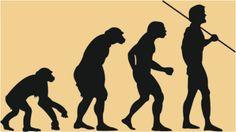 Darwin, from ape to men, paleo diet
