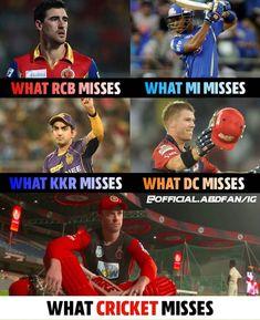 Crickets Funny, Kane Williamson, True Interesting Facts, Ab De Villiers, Brain Facts, David Warner, Virat Kohli, Cute Images, Superman