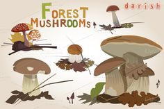 Check out Forest mushrooms by Darish on Creative Market