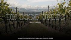 Un coro unito. Storia del #Brunello di #Montalcino.
