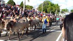 DESFILE DE CAVALEIROS DE JAGUARIÚNA 2015 PARTE 5