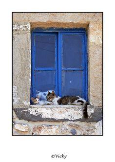 Greece----Vicky Dens