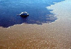 Encontro das aguas. Rio Negro x Solimões.