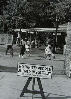 Cartel que se ponía en el Zoo de Memphis cada martes. El resto de los días la gente de color no era permitida. 1960.