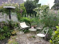 Gorgeous garden in Brassington, Derbyshire, UK. Scented roses, other cottage garden plants. Owned by a lovely lady with a strong artistic talent and a passion for plants.