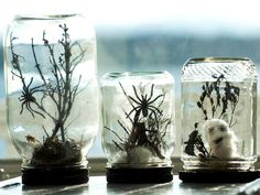 How to Make Halloween Terrariums With Mason Jars >> http://www.diynetwork.com/decorating/how-to-make-halloween-terrariums/index.html?soc=pinterest