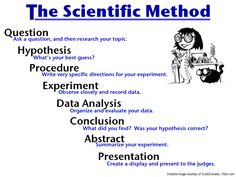 Image result for science method class display