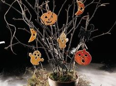 Spooky Halloween Tree | Holiday Cottage