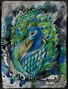 PEACOCK by balabolka, via Behance