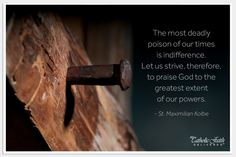 The most deadly poison of our times is indifference. Let us strive, therefore, to praise God to the greatest extent of our powers. - St. Maximilian Kolbe