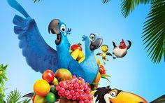 rio_movie_2011-wide.jpg 2,560×1,600 pixels