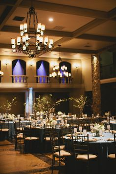 Prchal and  Miller Wedding, Jessica D' Onofrio Photography Image Gallery