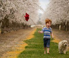 Spring Dog and Boy