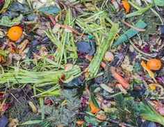 This Awesome New Technology Is Turning Food Waste Into Truly Biodegradable Plastic Biodegradable Plastic, Biodegradable Products, Garden Compost, Vegetable Garden, Organic Gardening, Gardening Tips, Faire Son Compost, How To Make Compost, Potager Bio