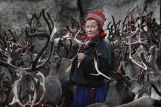 Sami woman in Norway in a reindeer herd. I could write a couple of pages on this one